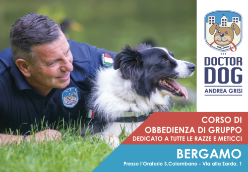 Bergamo dall'11 giugno al 4 luglio