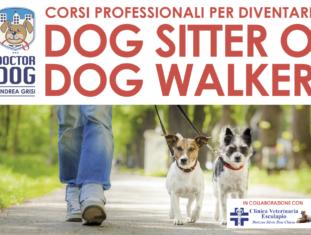 Corso di formazione per dog sitter e dog walker a Bedizzole